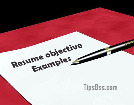 20 Resume Objective Examples for Any Career General